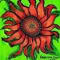 Sunflower 3 by Genevieve Esson