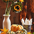 Sunflower And Gourds Still Life by Amanda Elwell