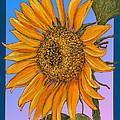 Da154 Sunflower By Daniel Adams by Daniel Adams