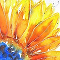 Sunflower Blue Orange And Yellow by Carlin Blahnik CarlinArtWatercolor