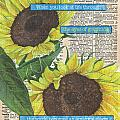 Sunflower Dictionary 2 by Debbie DeWitt
