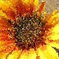 Sunflower Dream by Chris Berry