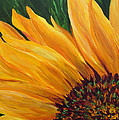 Sunflower From Summer by Mary Jo Zorad