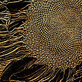Sunflower Gold Leaf Sketch by Phyllis Denton