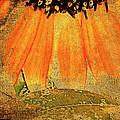 Sunflower Montage by Kathy Bassett
