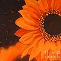 Sunflower Mystique by Janet McDonald