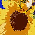 Sunflower Pop by Colleen Kammerer