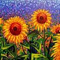 Sunflower Scape by John  Nolan
