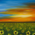 Sunflower Sunset - Flower Art By Sharon Cummings by Sharon Cummings