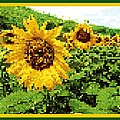 Sunflower Tapestry by Nikki Keep
