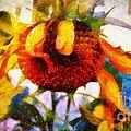 Sunflower Tender by Janine Riley