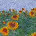 Sunflowerfield Abstract by Alice Gipson