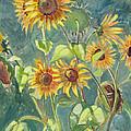 Sunflowers by Dominique Amendola
