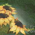 Sunflowers by Doreta Y Boyd