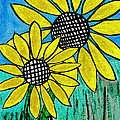 Sunflowers For Fun by Tom Janca