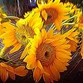 Sunflowers In December by Anne Thurston