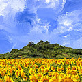Sunflowers In Tuscany by Dominic Piperata