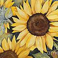 Sunflowers by Jackie Friesth