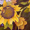 Sunflowers by Jill Ferguson
