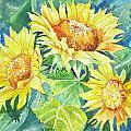 Sunflowers by Linda Haile