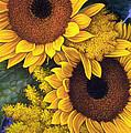 Sunflowers by Mia Tavonatti
