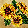 Sunflowers On Wooden Board by Irina Sztukowski