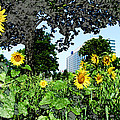 Sunflowers Outside Ford Motor Company Headquarters In Dearborn Michigan by Design Turnpike