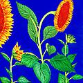 Sunflowers by Irina Sztukowski