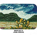 Sunflowers Taos by ArSpirare by Antonius