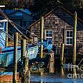 Shem Creek Life by Dale Powell
