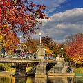 Sunkissed Lagoon Bridge by Joann Vitali