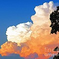 Sunkissed Storm Cloud by Sharon Woerner