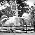 Sunlight Through Savannah Fountain With Vignette by Carol Groenen