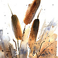 Sunlit Cattails by Vickie Sue Cheek