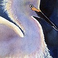 Sunlit Egret by Patricia Pushaw