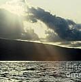 Sunlit Rays Before Sunset by Jussta Jussta
