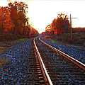 Sunlit Tracks by Lars Lentz
