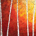 Sunset Birches by Judith Cahill