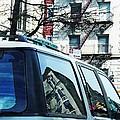 Sunny Day In Washington Heights by Sarah Loft