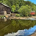 Sunny Days At Mcconnells Mill by Adam Jewell