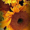 Sunny Easter Bouquet by Susan Garren
