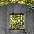 Sunny Garden Gate In Charleston by Debbie Karnes