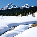 Sunny January Day Sawtooth Mountains by Ed  Riche