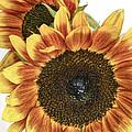 Sunny Pair by David and Carol Kelly