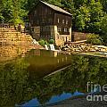 Sunny Refelctions In Slippery Rock Creek by Adam Jewell
