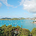 Sunny St Thomas by Aimee L Maher ALM GALLERY