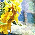 Sunnyabstracted by Alice Gipson