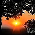 Sunrise 365 38 by Tina M Wenger