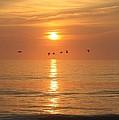 Sunrise #4 by Staci  AJello