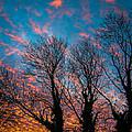 Sunrise At Aghadoe In Ireland's County Kerry by James Truett